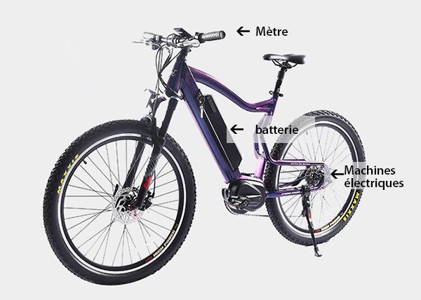 Connaissez-vous le bon sens d'acheter des vélos électriques?